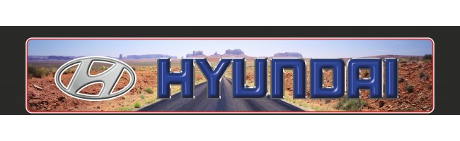 35X170 cm Hyundai Baskılı Kamyon Paçalığı