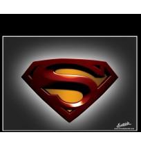 50X60 cm Süperman Baskılı Kamyon Paçalığı