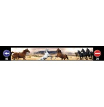 35X240 cm At Baskılı Kamyon Paçalığı