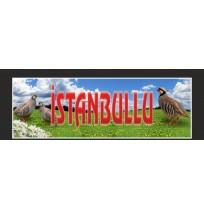 İstanbul Yazılı Keklik Resimli Paçalık Tozluk Tampon Boy 35x100cm