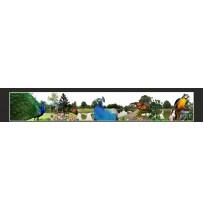 35X210 cm Tavuş Kuşu Baskılı Kamyon Paçalığı